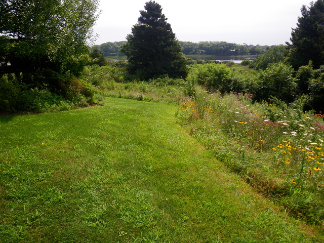 Residential meadow - Chatham MA traditional-landscape