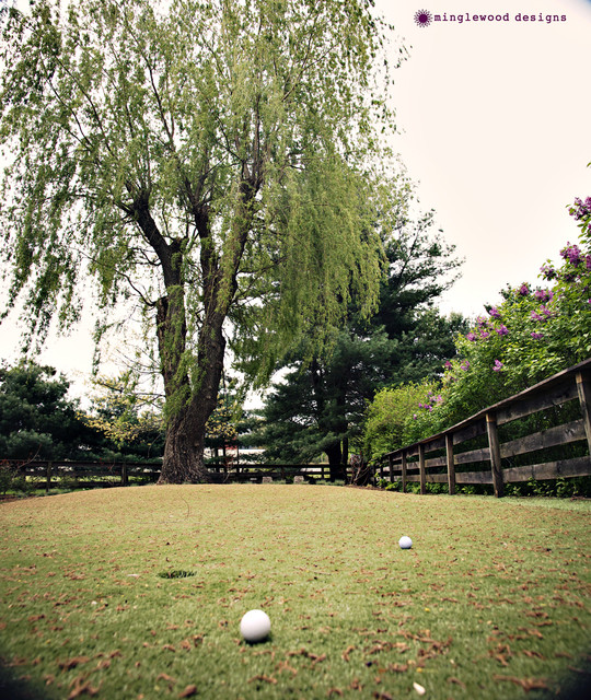 Residential Putting Green eclectic-landscape