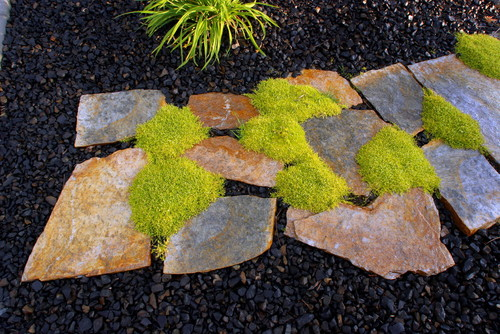 5 rock landscaping ideas for Landscaping rocks seattle