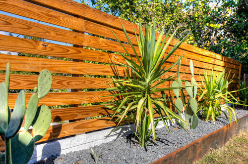 Behind this garden is a short wooden slat fence.