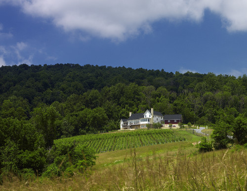 Ridgeside Vineyard Farmhouse