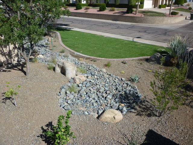 Riparian Area w/ Plantings contemporary-landscape
