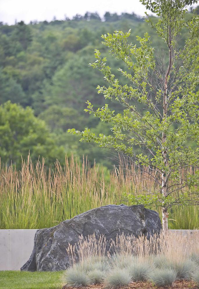 Inspiration for a modern landscaping in Burlington.