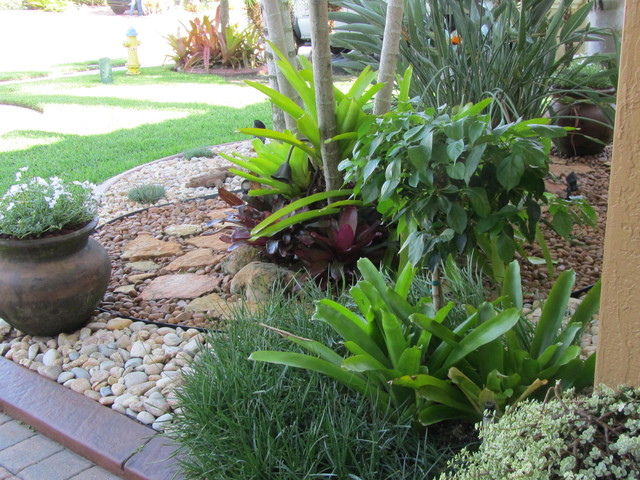 Rock garden for Low maintenance tropical plants