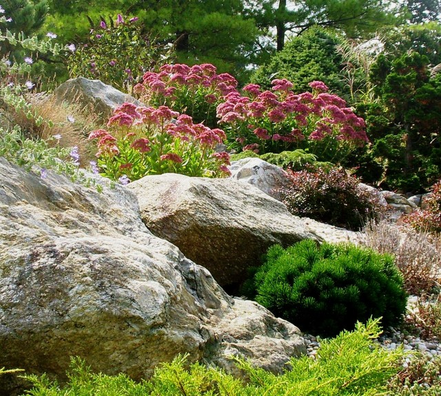 ... Garden Design With Rock Garden Home Design Ideas, Pictures, Remodel And  Decor With Front