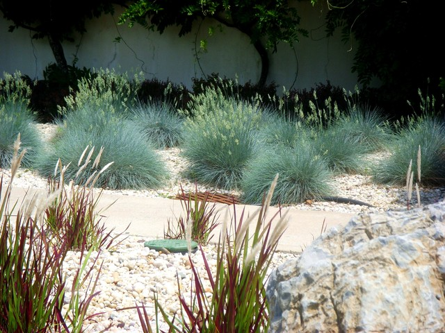 Rock Garden contemporary landscape