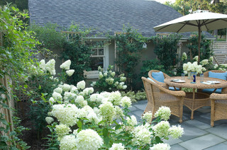 Romantic Tarrytown Terrace eclectic-landscape