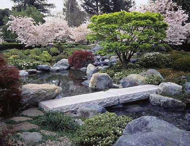 lay of the landscape japanese garden design, Natural flower