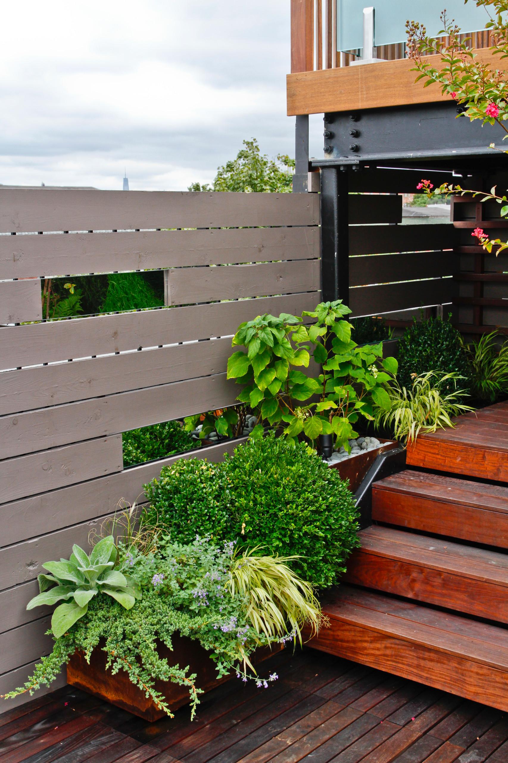 Rooftop Garden III