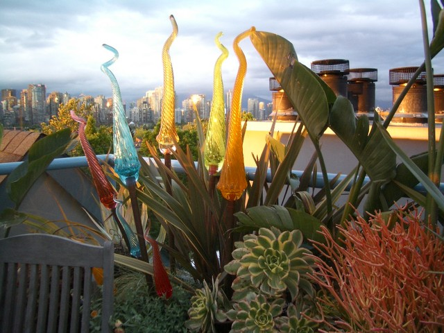 Rooftop Terrace Tropical Landscape Vancouver By