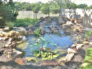 Rose and Robert's Texas Pond with Waterfall and Bubbling Boulder