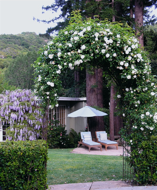 Rose Covered Arbor Traditional Landscape San Francisco By
