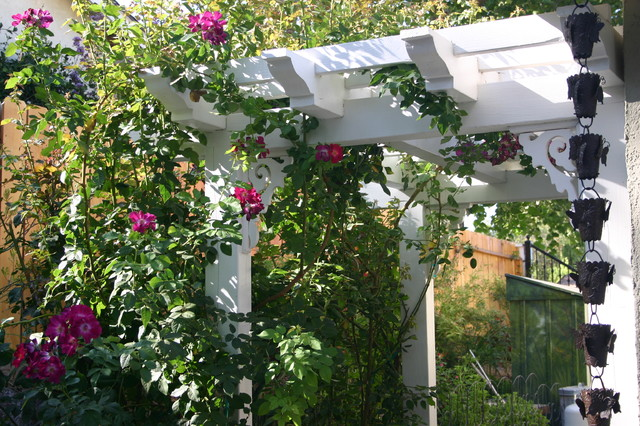Roses on a pergola tropical-landscape