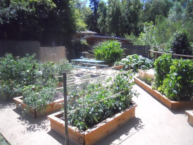 San Anselmo Organic Garden contemporary-landscape