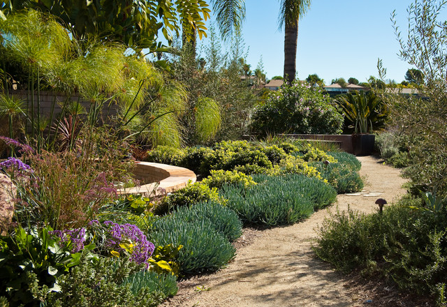 San diego drought tolerant landscape for Backyard landscaping ideas san diego