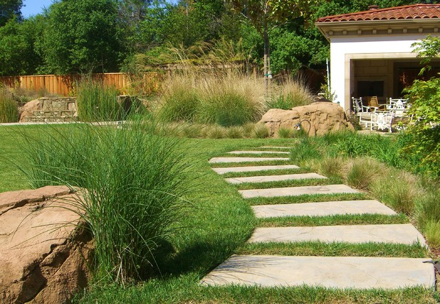 San francisco bay area mediterranean landscape for Area landscape architects