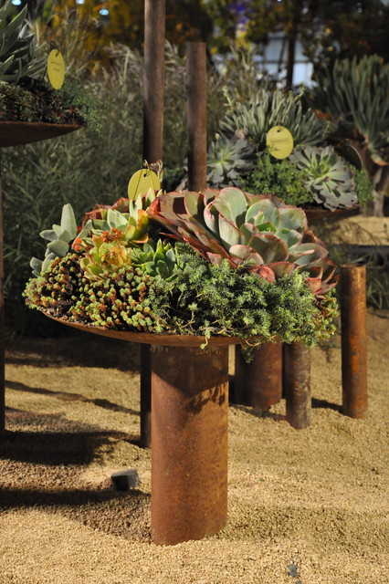 22 Beautiful San Francisco Landscape And Garden Show