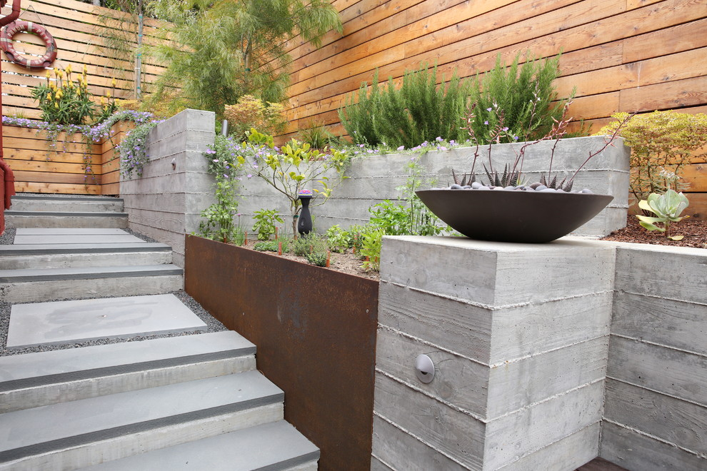 Inspiration for a mid-century modern landscaping in San Francisco.
