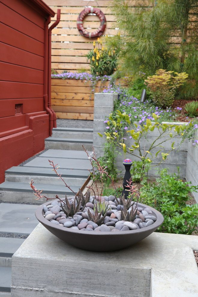 This is an example of a mid-century modern landscaping in San Francisco.