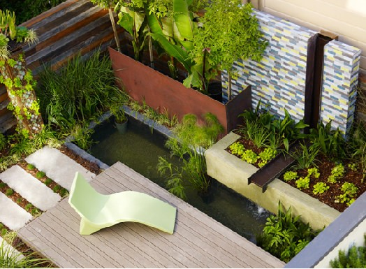San Francisco Oasis contemporary-landscape