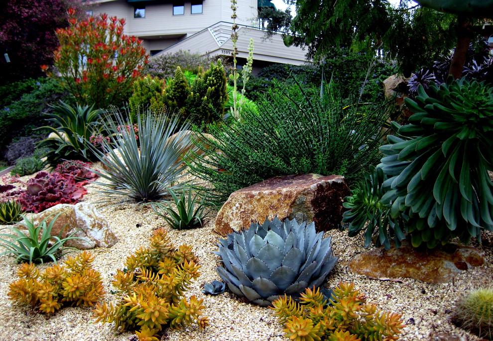 Inspiration for a mediterranean gravel landscaping in San Luis Obispo.