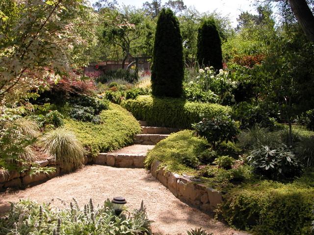 San Rafael Mediterranean garden Mediterranean Landscape San