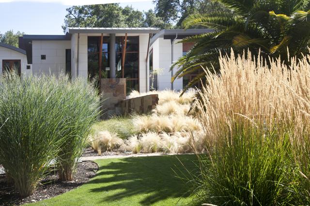 Saratoga Creek House contemporary-landscape