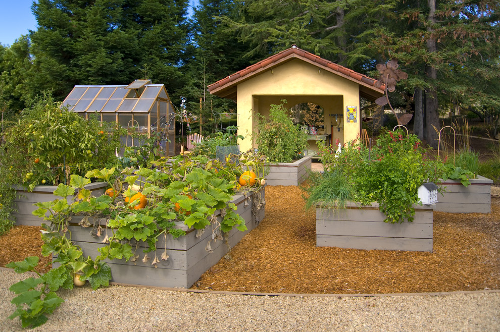 Design ideas for a mediterranean vegetable garden landscape in San Francisco.