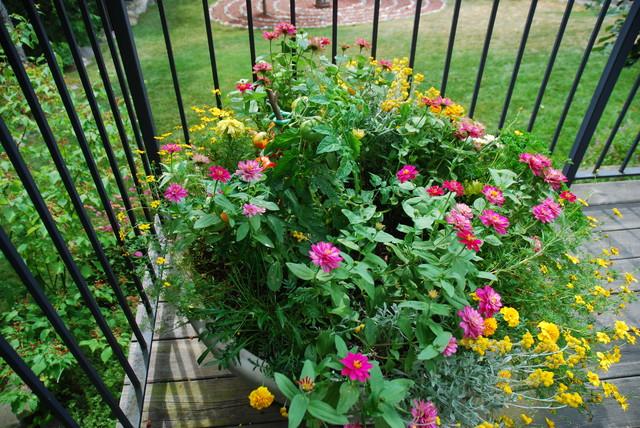 Seasonal Planters: Creative Design traditional-landscape