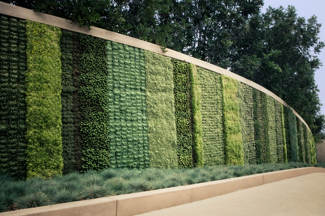 Seasons Living Wall Beverly Hills Contemporary