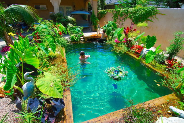Secret garden of los angeles traditional landscape los angeles by enviroscapela for Natural swimming pools los angeles