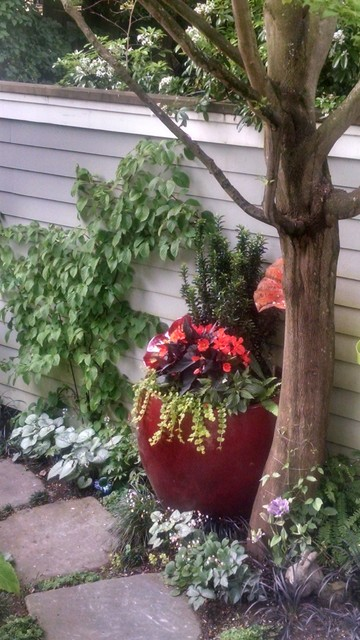 Design ideas for an eclectic shade garden path in Seattle for winter.