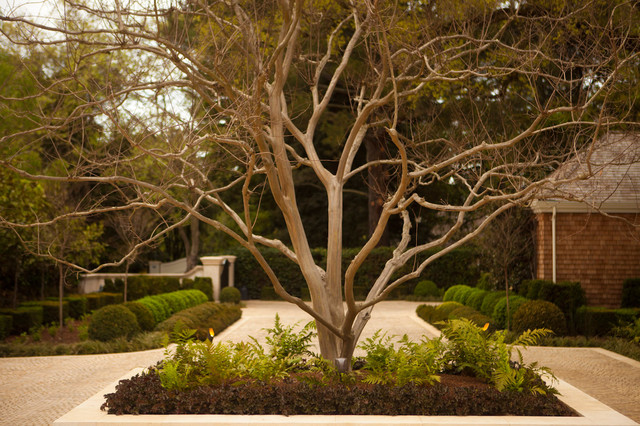 Selby House traditional-landscape