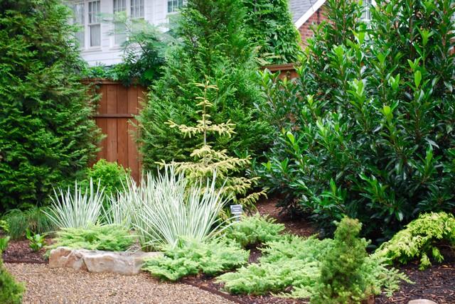 Contemporary garden in Charlotte.