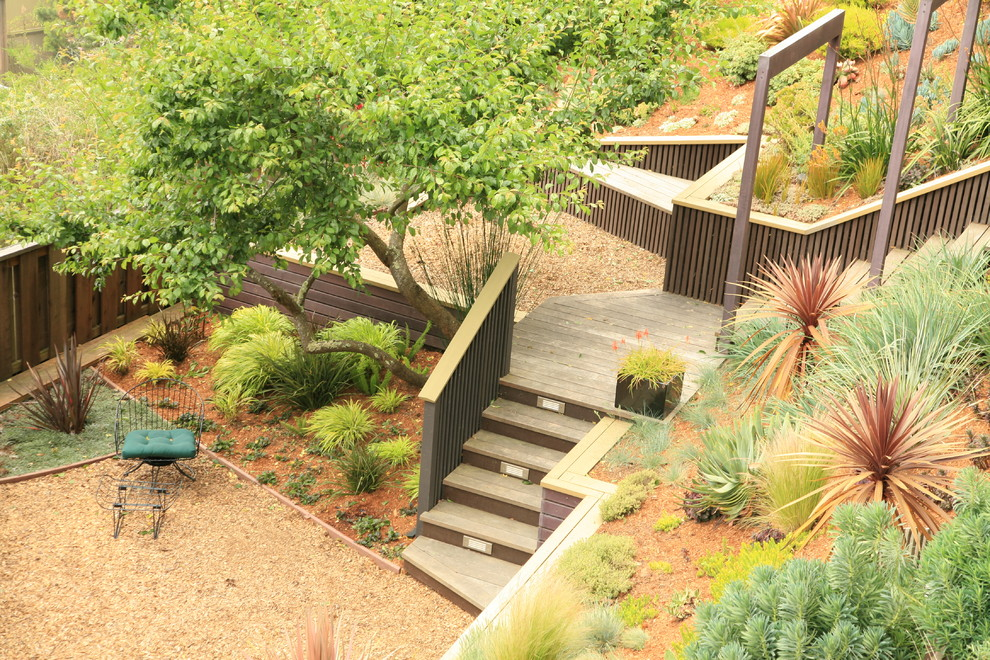 Inspiration for a large modern drought-tolerant landscaping in San Francisco.