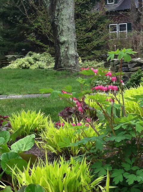 Shade garden in early spring asian landscape for Shade garden designs