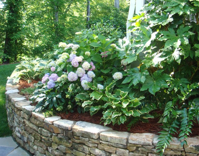 Shade Garden in raised bed with stone wall - Traditional - Landscape ...