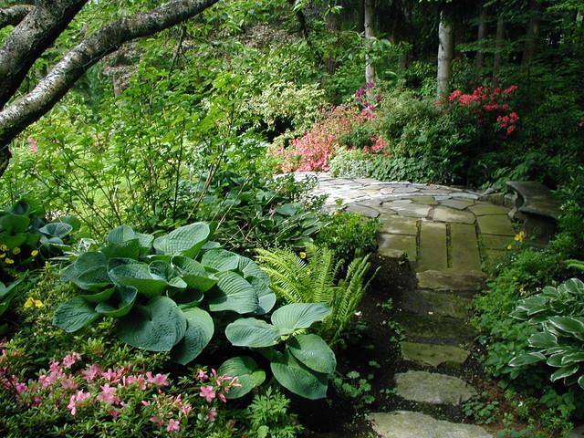 Shade garden path contemporary landscape other metro for Shade garden designs