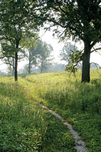 Shaw Nature Reserve Garten St Louis Von Missouri Botanical