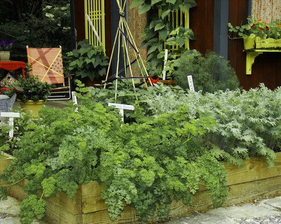 4,489 Raised Bed Herb Garden Home Design Photos