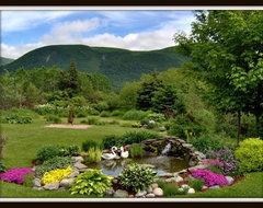 Sherri Fitzgerald traditional-landscape