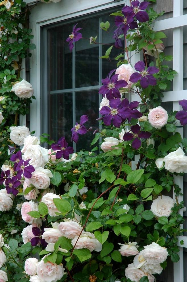 Klassisk inredning av en mellanstor trädgård
