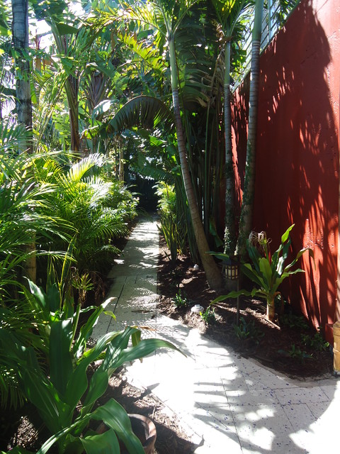 Side Yard Landscaping Tropical Landscape Miami By