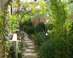 Side Yard Makeover by Shirley Bovshow of EdenMakersBlog.com mediterranean-landscape