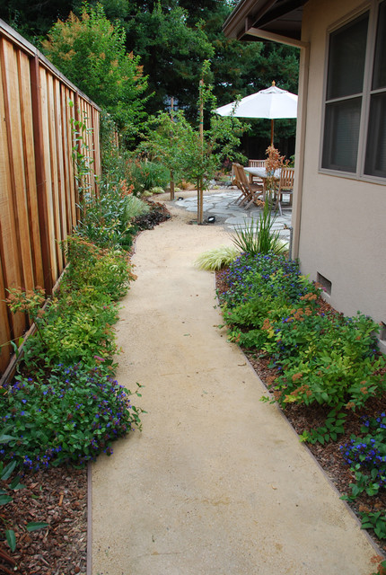 Side Yard Path To Patio Asian Landscape San
