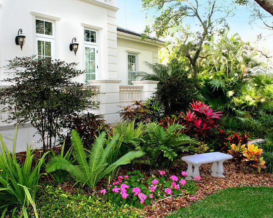 507 small front yard landscaping ideas tropical home design photos