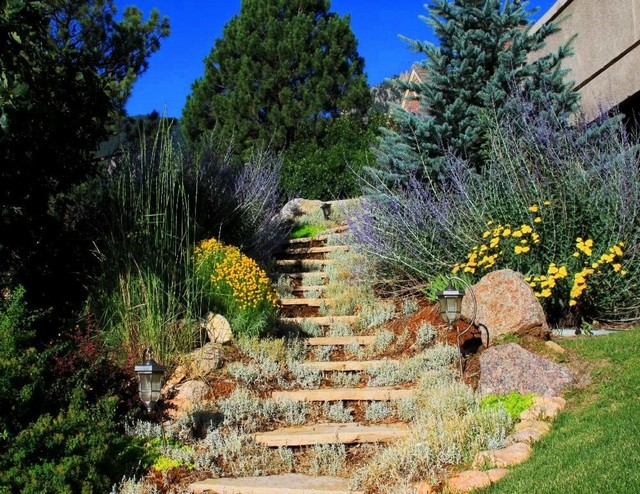 Slope landscape traditional landscape denver by for Traditional landscape
