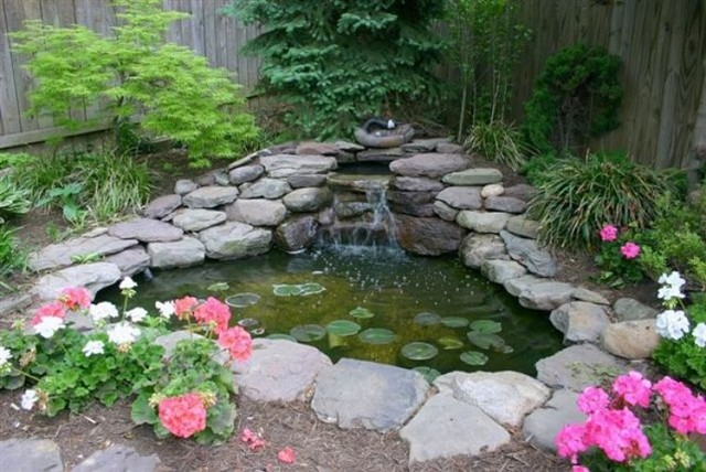 Small corner pond traditional landscape other metro for Backyard ponds and water features