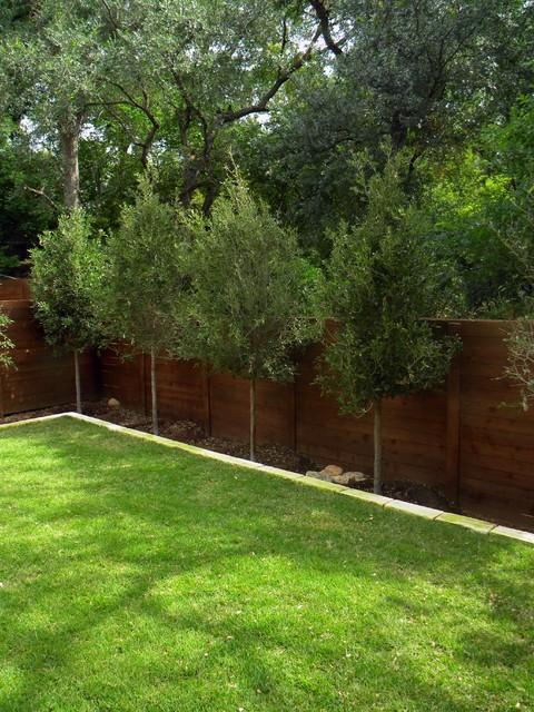 Small Minimal Backyard Modern Garden Austin By