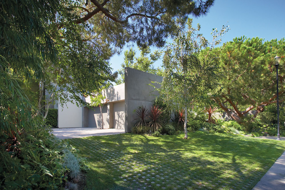 Photo of a contemporary side yard landscaping in Orange County.